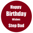Happy Birthday Wishes for Stepdad